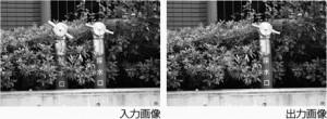 yamay_imageComp_fmt-300x110